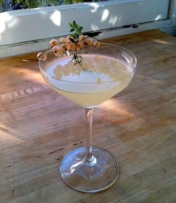фото домашней настойки из белой смородины на водке