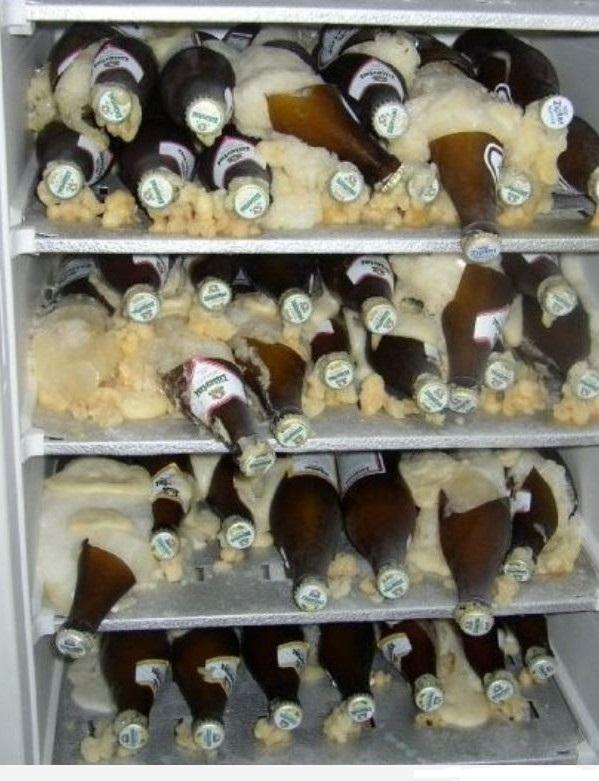 фото замерзших бутылок пива в морозильной камере