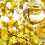 фото вина и винограда совиньон блан