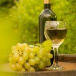 фото вина Совиньон Блан