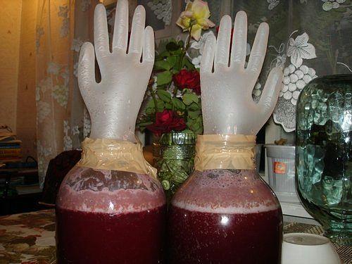 фото йоштового вина под гидрозатвором