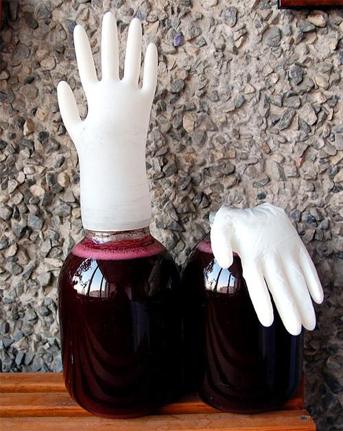 фото надутой и опущенной перчатки с вином