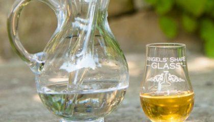 фото с чем нужно пить виски