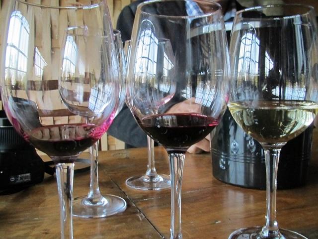 фото видов вин Алазанская долина