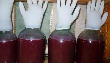 фото вина из винограда с перчаткой