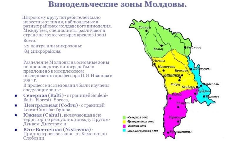 фото винодельческих регионов Молдовы
