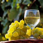 фото белого вина Мальвазия
