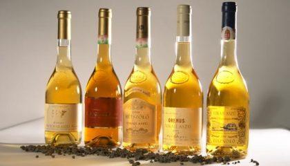 фото токайских вин из Венгрии