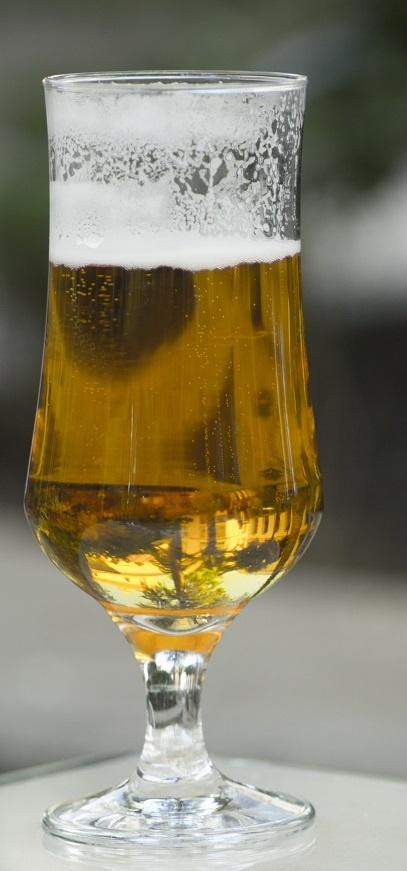 стиль пива Pale Kellerbier
