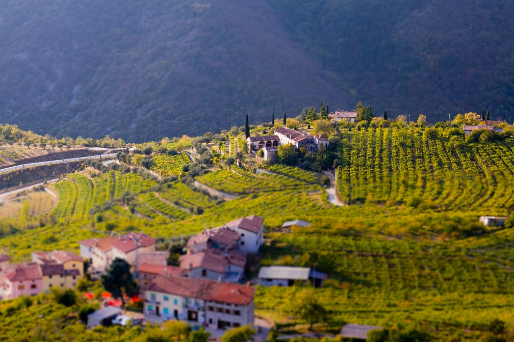 фото пейзажа региона Вальполичелла