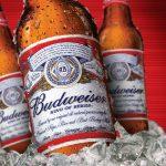 фото бутылки пива будвайзер