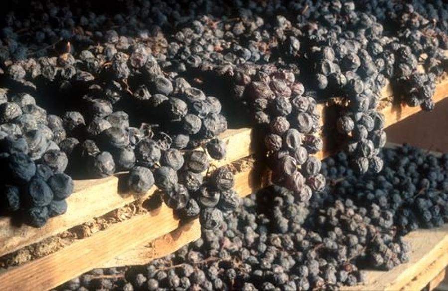 фото заизюмленного винограда