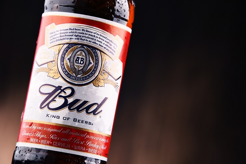 американское пиво Будвайзер