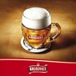 фото бокала пива крушовице