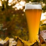Autumn Seasonal Beer