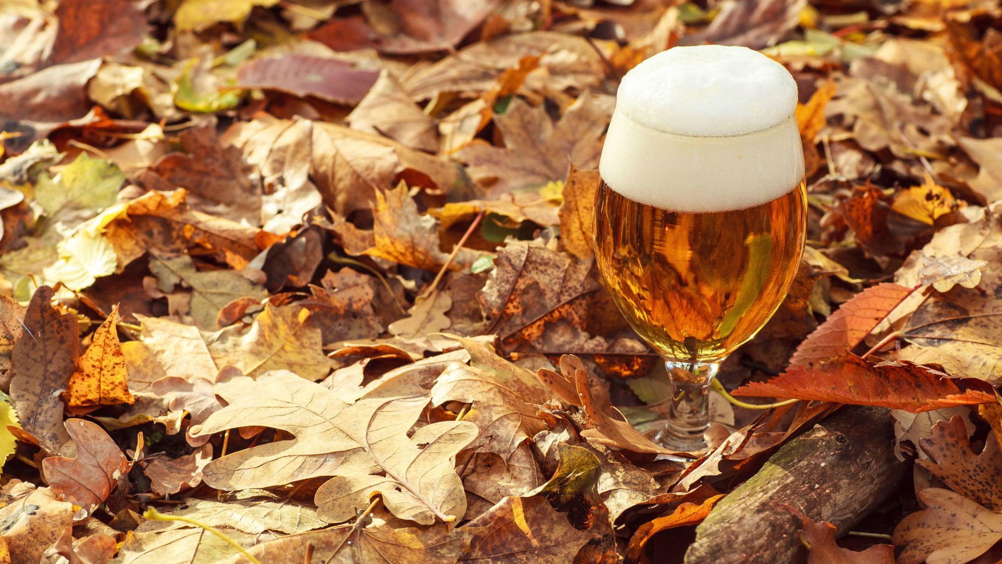 Осеннее сезонное пиво