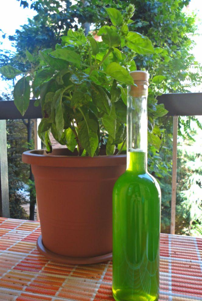 фото самодельного ликера из базилика на водке