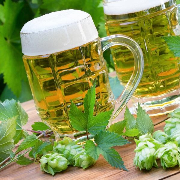 почему случается аллергия на пиво