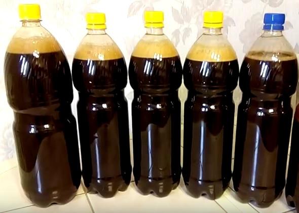 фото самодельного пива из квасного сусла в бутылках