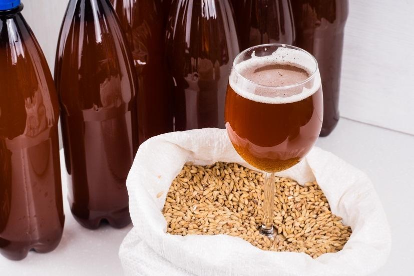 домашнее пшеничное пиво Вайсбир