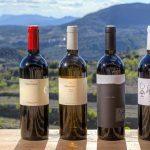 фото испанских вин приората