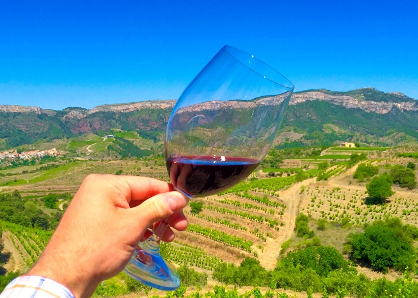фото красного вина Приорат