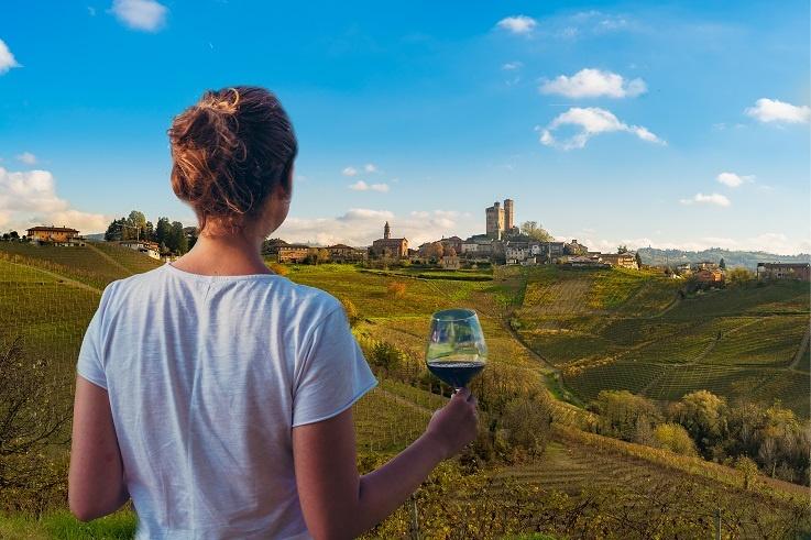 Виноградник в регионе Барбареско фото
