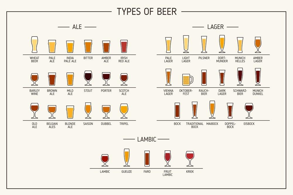типы бокалов для пива