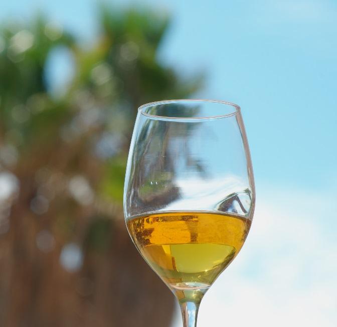 фото вина верментино в бокале