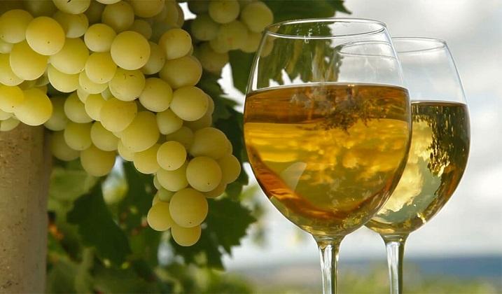 фото белого сухого вина Ркацители