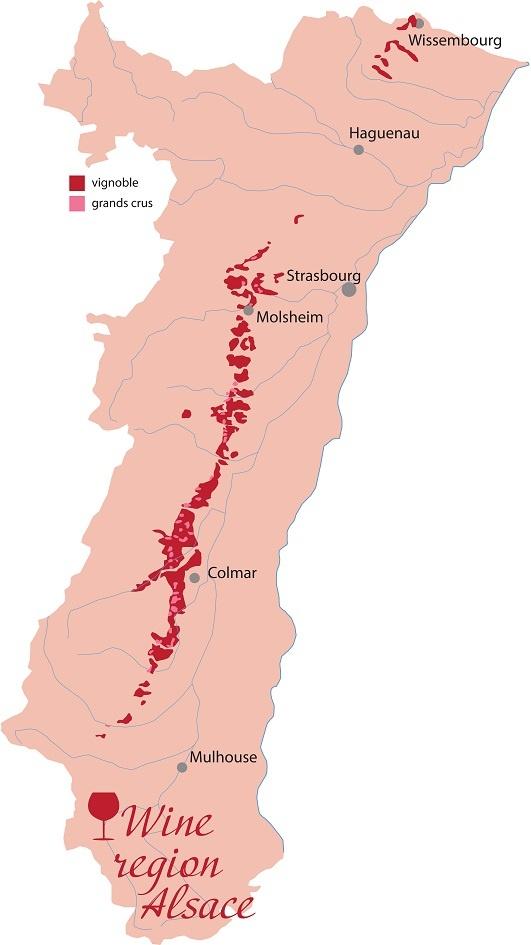 винодельческий регион Эльзас во Франции