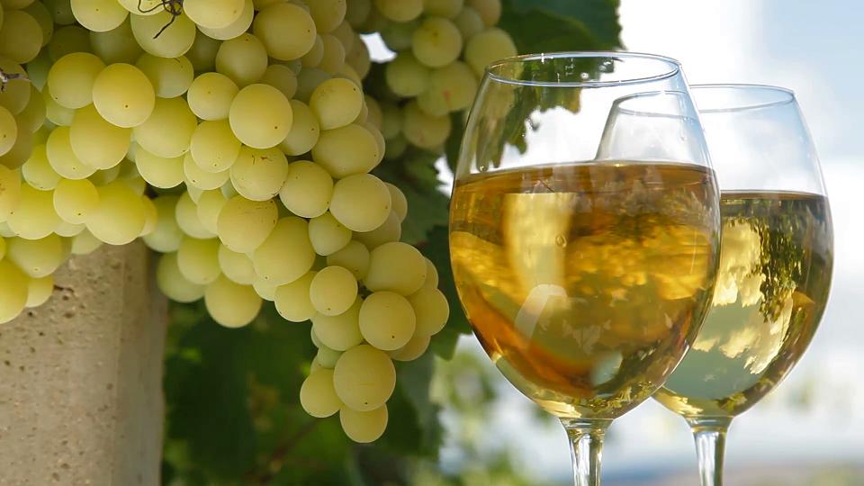 фото белого мускатного вина