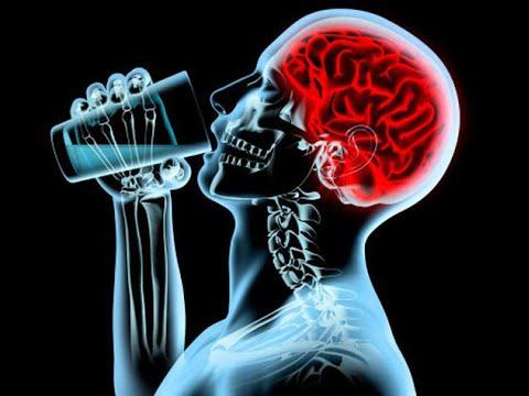 алкоголь и мозги