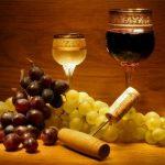 фото белых и красных болгарских вин