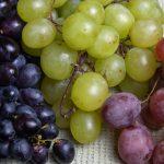 фото сортов винограда для приготовления домашнего вина