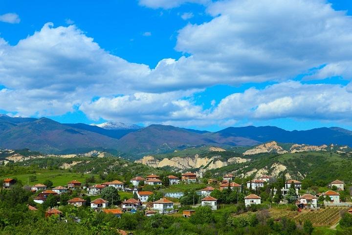фото виноградника в Болгарии