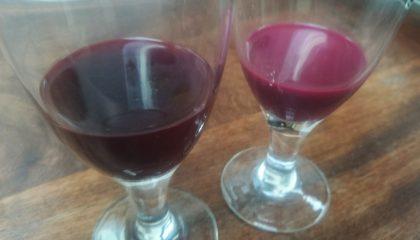 фото наливок из ягод черной бузины