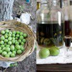как сделать настойку молодого грецкого ореха на водке