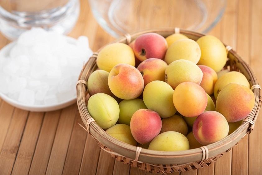 Японский абрикос муме фото