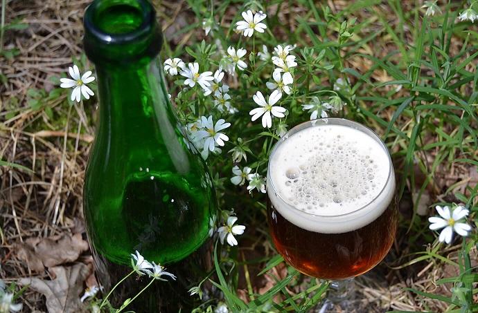 фото пива грюйт