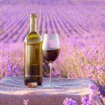 фото вина из Прованса