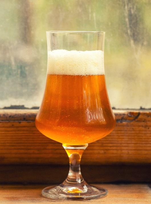 фото пива дикий эль