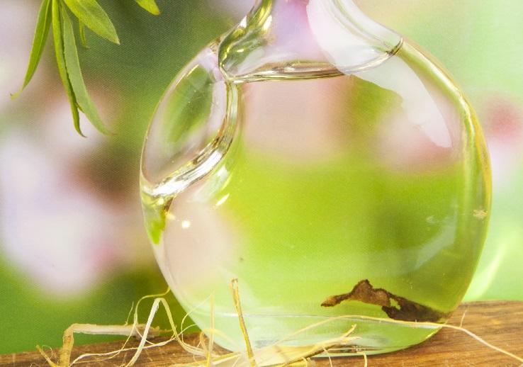 фото настойки индийского лука на водке