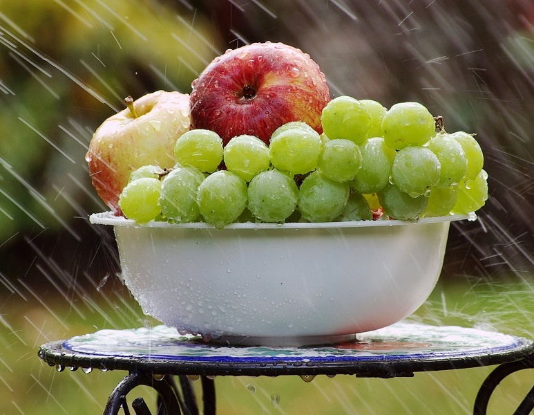 мацерация самогона яблоками и виноградом