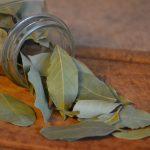 сухой лавровый лист фото