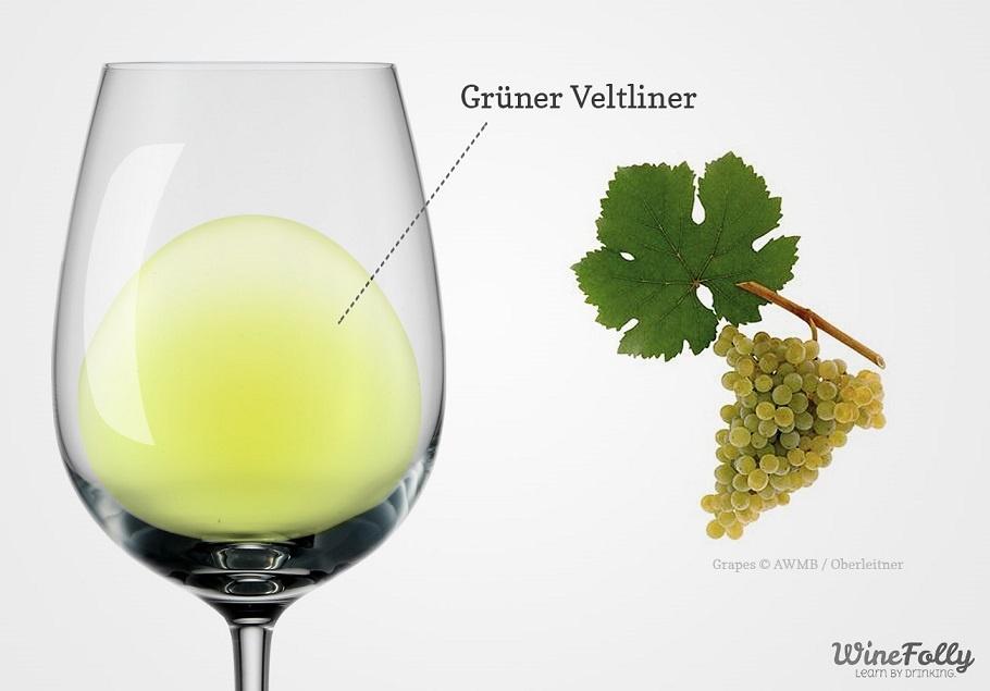 вино Грюнер Вельтлинер фото
