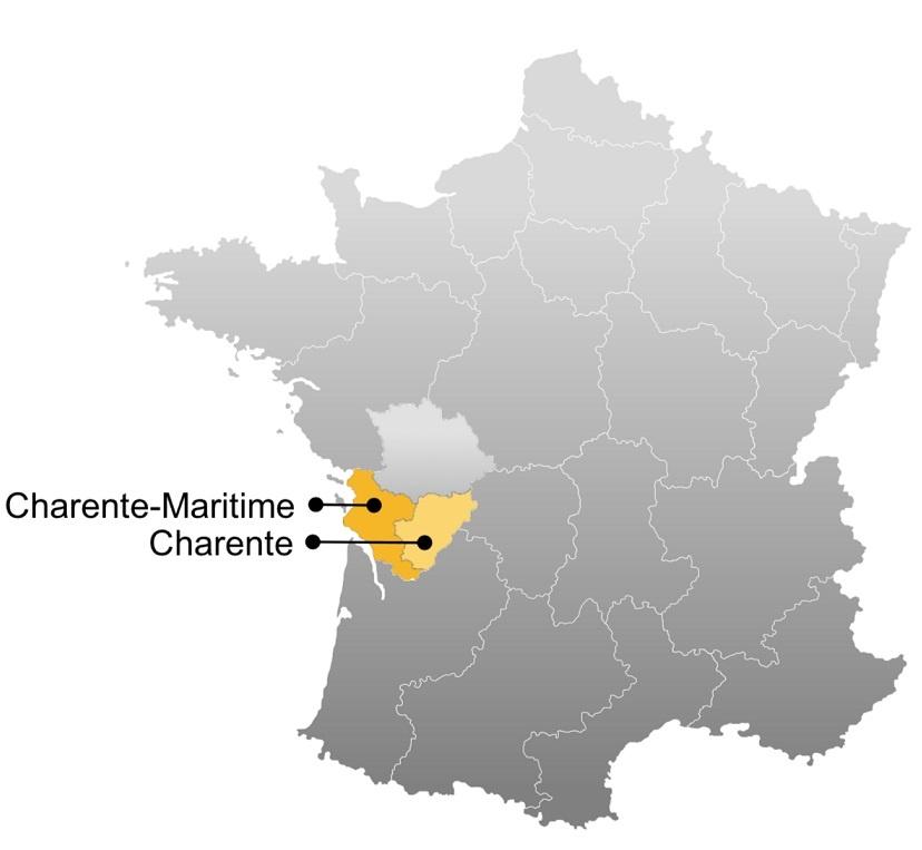 карта производства Пино де Шарант