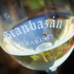 вино Альбариньо фото